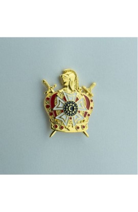 Pin Demolay
