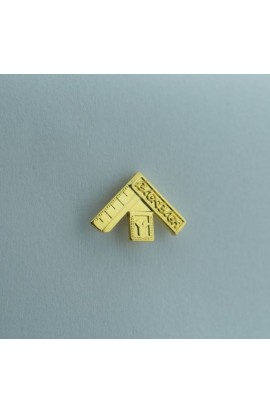 Pin Mini Joia Past Master